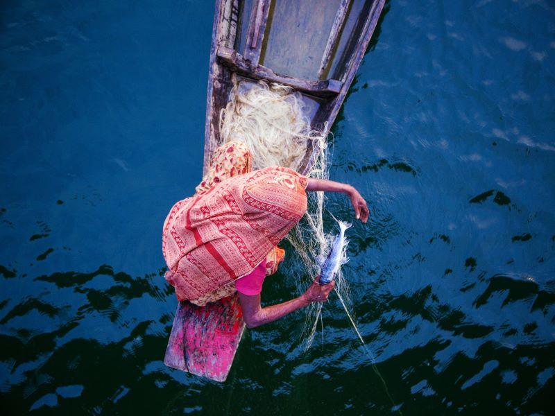 Bangladesh fish
